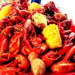 Southeast Texas Live Music Calendar – 2019 Boys Haven Crawfish Festival in Beaumont