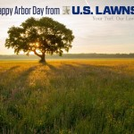 Happy Arbor Day from US Lawns of Beaumont