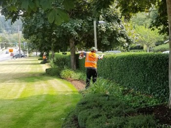 landscaping North Shore TX, irrigation Crosby TX, commercial landscaping Pasadena TX, Baytown lawn care,