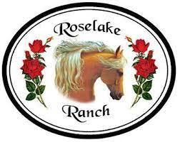 where to stay Nacogdoches, Dude Ranch Texas, B&B Guide East Texas, lodging SFA,